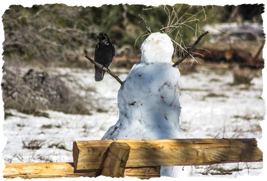 Snowman and crow in San Diego County, California