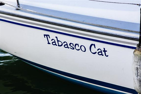 Tabasco Cat