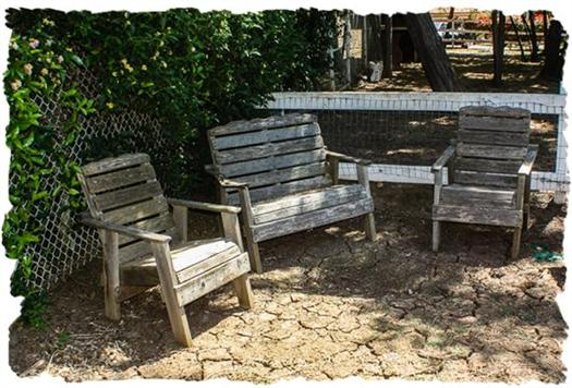 Back yard seating