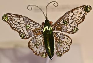 butterfly (4)