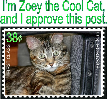 I'm Zoey the Cool Cat, and I approve this post.