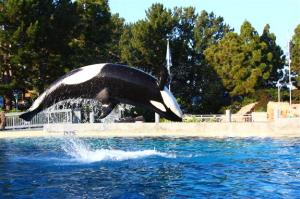 Dining with Shamu at SeaWorld
