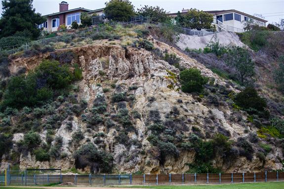 Eocene sandstone of the Scripps Formation