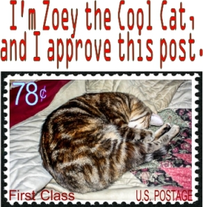 I'm Zoey the Cool Cat, and I approve this post