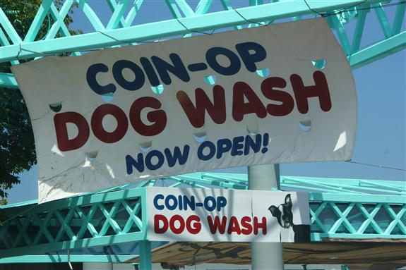 Coin-Op Dog Wash