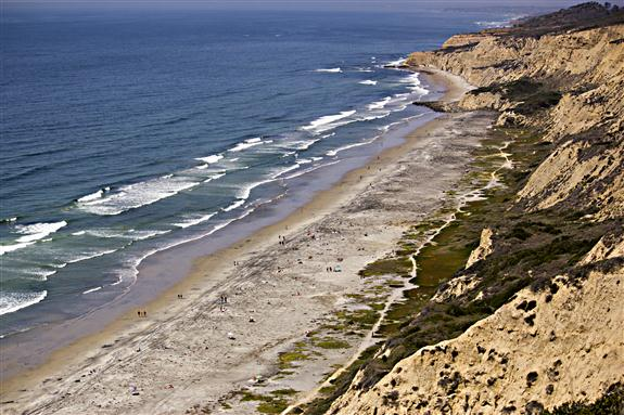 Blacks Beach