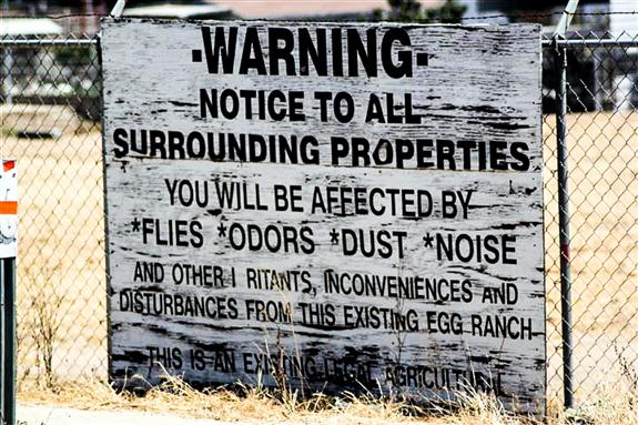 Chicken farm disclosure