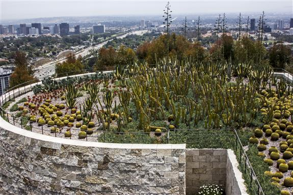 The Cactus Garden at The Getty Center in Los Angeles