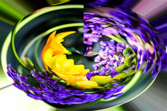 Yellow and Purple Flowers Rounder