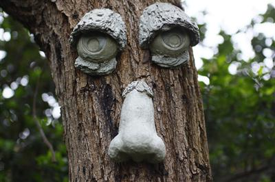 Tree eyes and nose