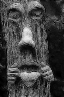 Tree face 4