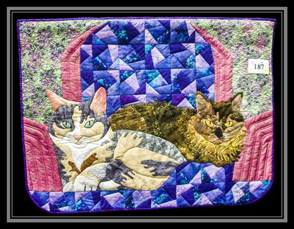 San Diego Quilt Convention