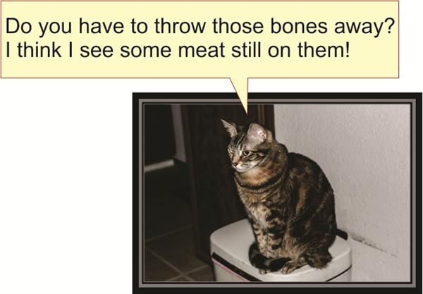 Do you have to throw those bones away? I think I see some meat still on them!