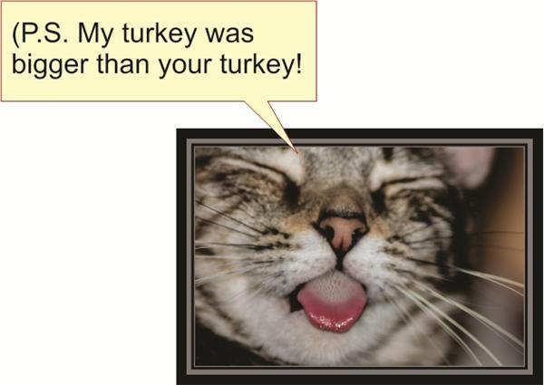 (P. S. My turkey was bigger than your turkey!)