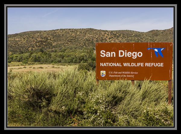 San Diego National Wildlife Refuge