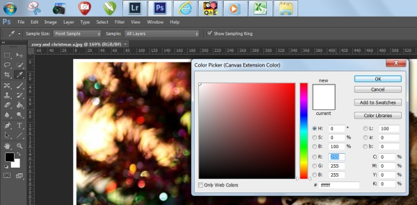 Color picker (Canvas extension color) box in Photoshop CS6