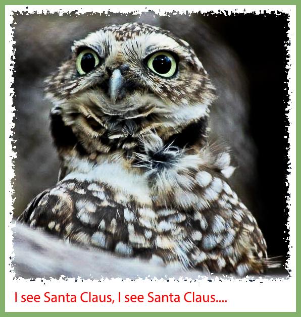 I see Santa Claus