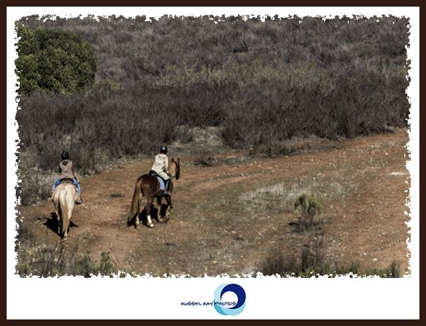 Riding horses in the San Diego National Wildlife Refuge