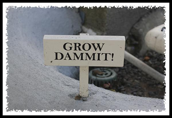 Grow dammit!