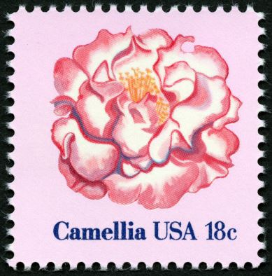 Scott #1877 Camelia