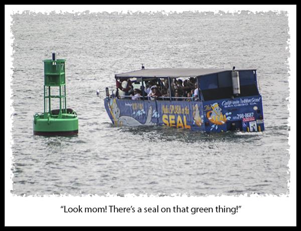 Make a Splash on the Seal