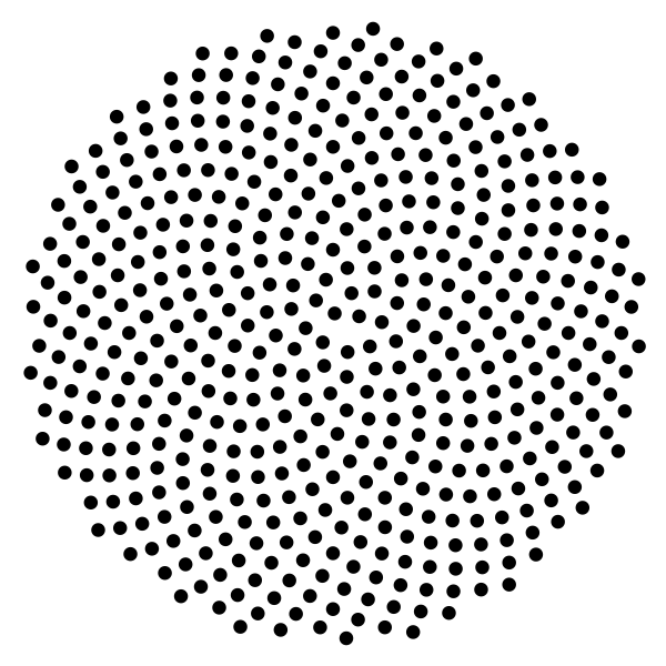 Predicted sunflower spirals with 500 florets