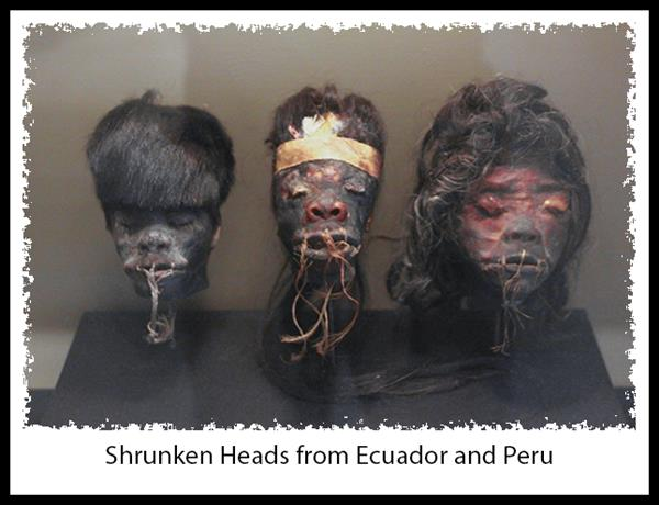 Shrunken heads at the San Diego Museum of Man