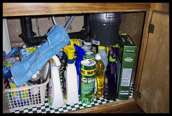 Sink cabinets are not for storing chemicals