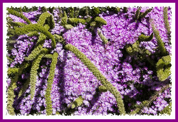 Ice plant at San Diego State University