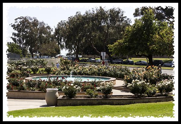 Inez Grant Parker Memorial Rose Garden in Balboa Park, San Diego