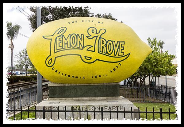 The world's largest lemon