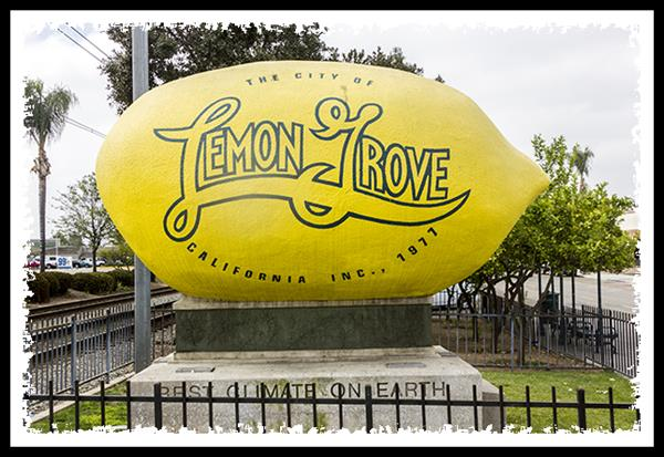 The world's largest lemon