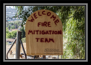 Fire Mitigation Team