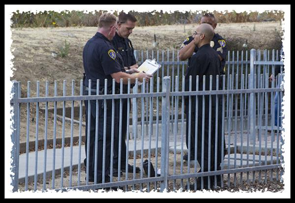 Police officers conducting a field sobriety test