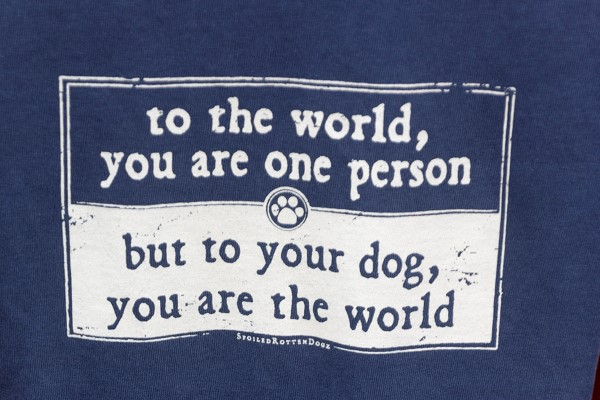 You are the world to your dog