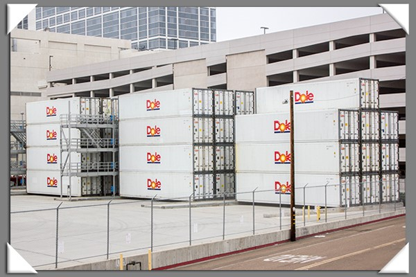 Dole shipping containers