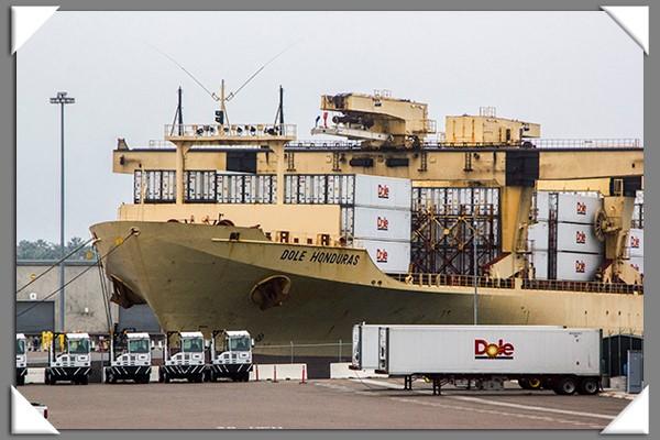 Dole Honduras ship
