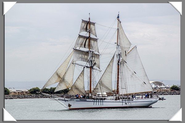 Tall Ship Parade at San Diego Festival of Sail
