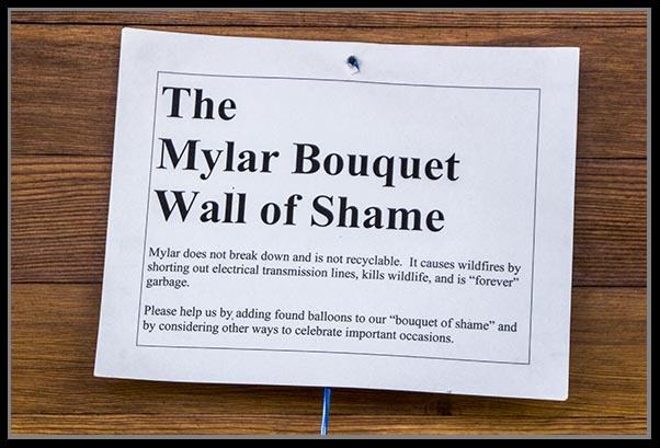 Mylar Bouquet Wall of Shame