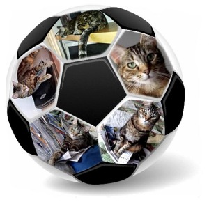 Zoey the Cool Cat soccer ball