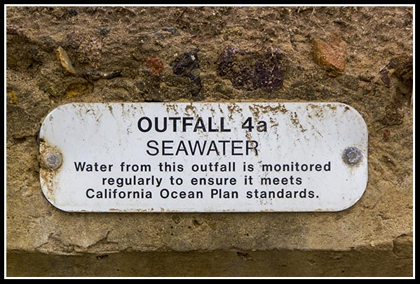 Outfall seawater
