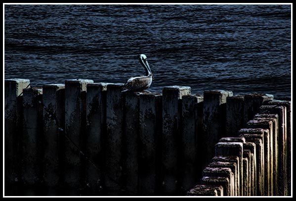 Lonely day on the seawall