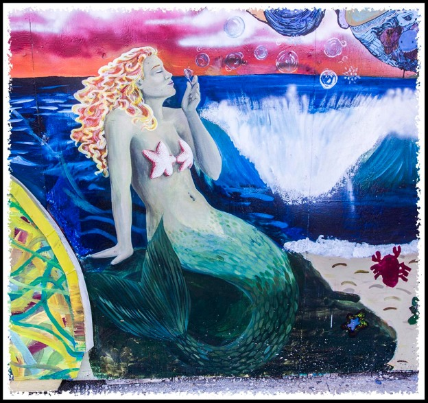 Bibbey's Shells, Rocks & Gift Shop in Imperial Beach, California