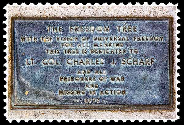Freedom Tree plaque on the campus of San Diego State University