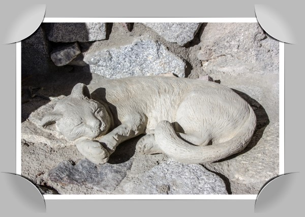 Cat carved into solid granite