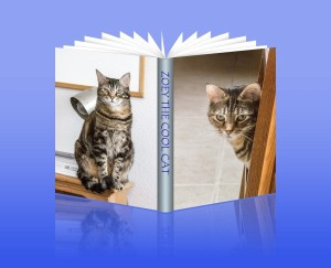 Zoey the Cool Cat book