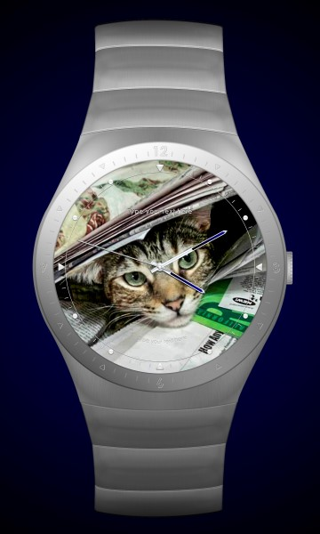 Zoey the Cool Cat wristwatch