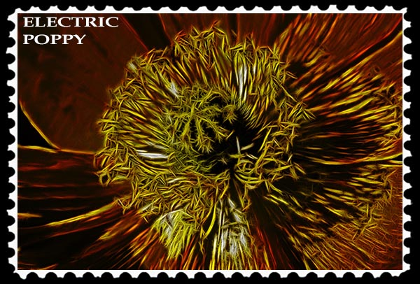 Electric Poppy stamp