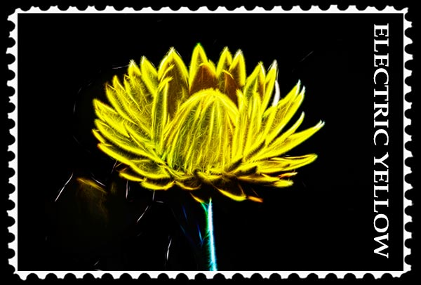 Electric Yellow stamp