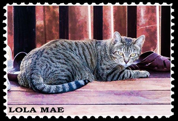 Lola Mae